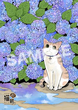 フェリシモ猫部__猫とあじさい