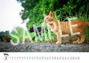 猫とビートルズ__129