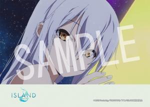 ISLAND__ED 08 2L