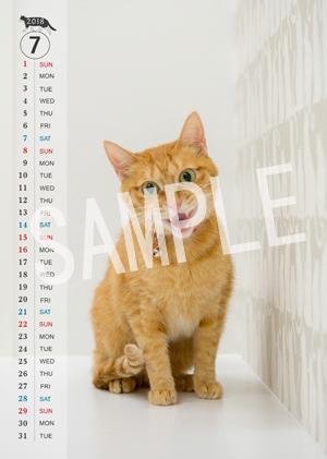 猫とビートルズ__178