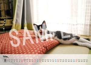 猫とビートルズ__68
