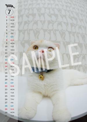 猫とビートルズ__177