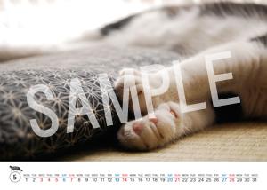 猫とビートルズ__40