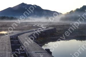 尾瀬上田代の朝、燧ヶ岳