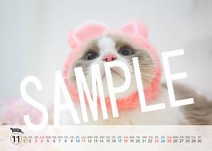 猫とビートルズ__216
