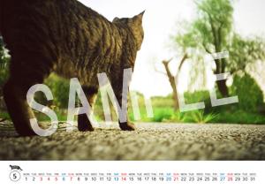猫とビートルズ__38
