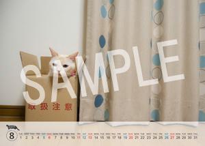 猫とビートルズ__69