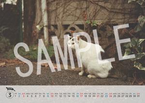 猫とビートルズ__258