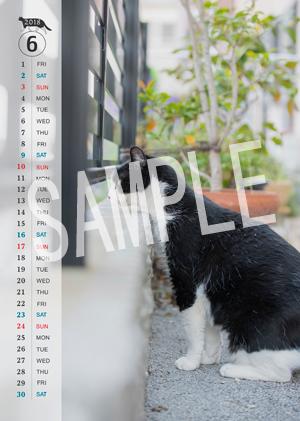 猫とビートルズ__170