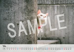猫とビートルズ__39