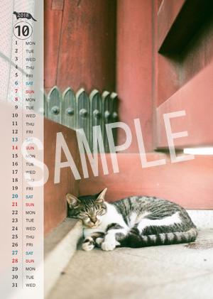 猫とビートルズ__207
