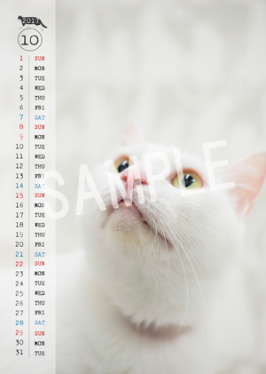 猫とビートルズ__88