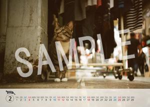 猫とビートルズ__130