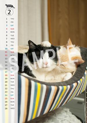 猫とビートルズ__128