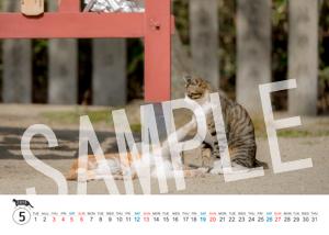 猫とビートルズ__159