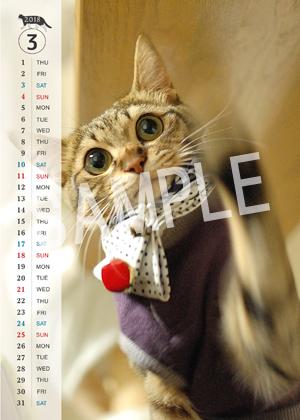 猫とビートルズ__139