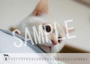 猫とビートルズ__188