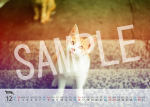 猫とビートルズ__226