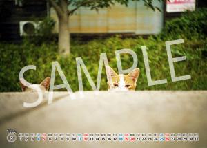 猫とビートルズ__19