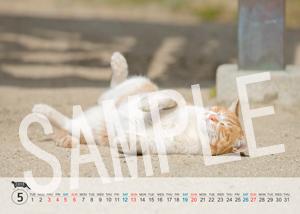 猫とビートルズ__160