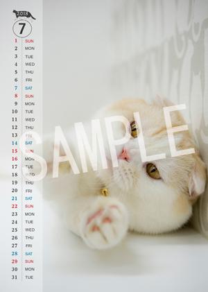猫とビートルズ__176