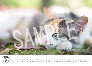 猫とビートルズ__186