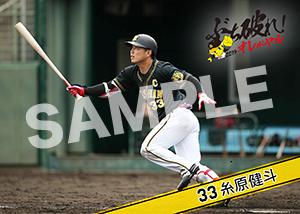 阪神2019__糸原健斗 02