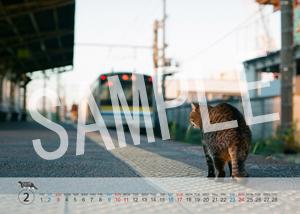 猫とビートルズ__246