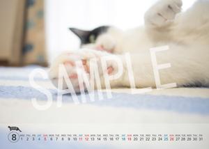 猫とビートルズ__187