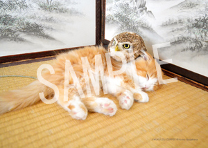 ネコとフクロウ__015
