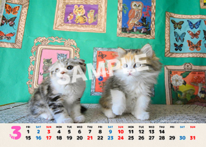 ネコとフクロウ__180